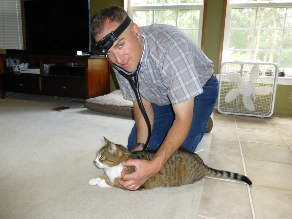 Dr. Keelan Rogers examining a cat